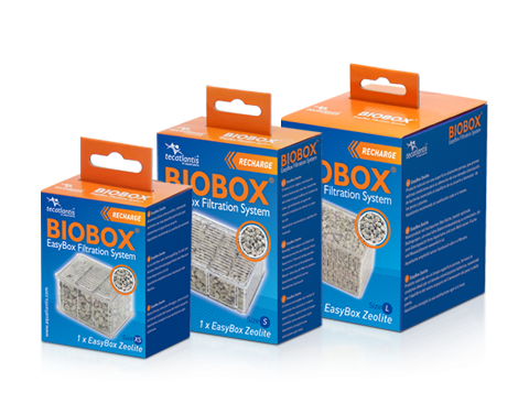 Easy box Zeolite L