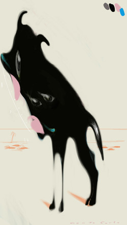 モンテカルロの濡れ犬