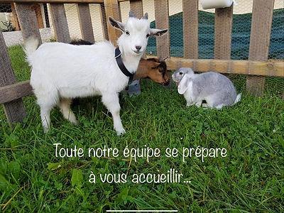 Brasserie des Belleville 4.jpg
