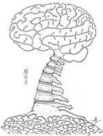 Spine Tree