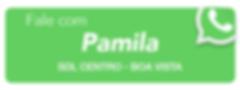 RORAIMA - PAMILA.png