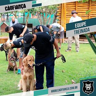 equip_treinada_1.png