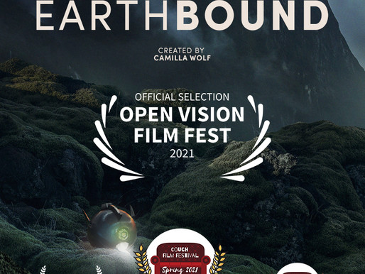 EARTHBOUND screening at the annual Open Vision Film Fest APRIL 12