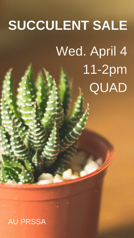 Succulent Sale Gaphic for Snapchat
