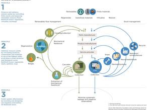 Simplificando: O que é a Economia Circular?