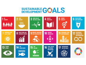 Do you know what Sustainable Development means? And the SDGs?