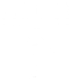 transparent white aza logo.png