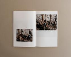 Symbiosis book 02 0005