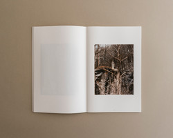 Symbiosis book 01 0005