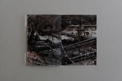 Symbiosis book 04  0013