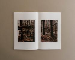 Symbiosis book 03 0009