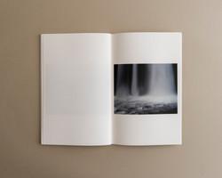 Symbiosis book 01 0010