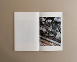 Symbiosis book 02 0009