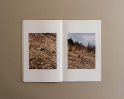Symbiosis book 03 0006