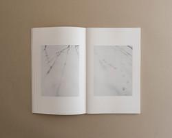 Symbiosis book 03 0003