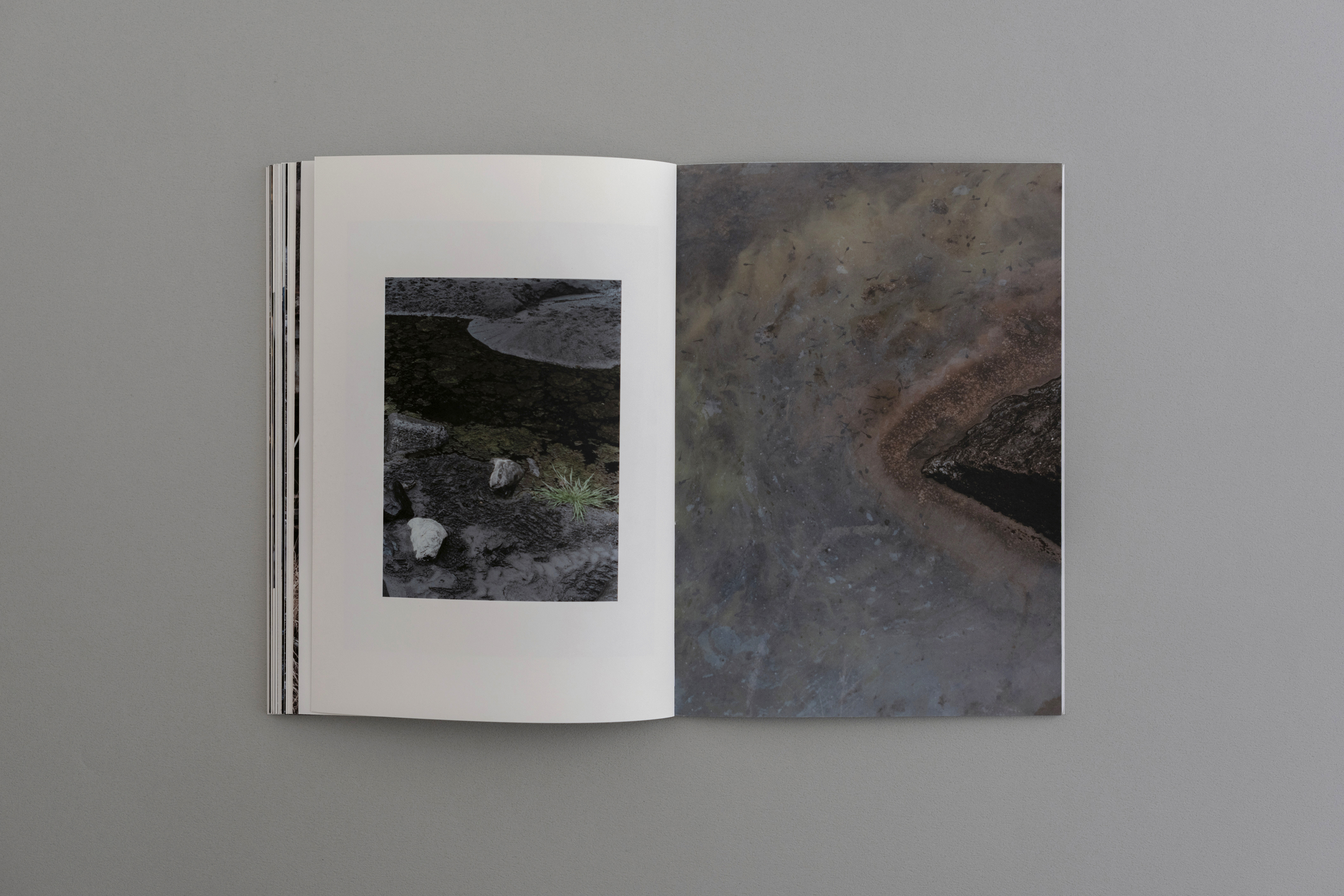 Symbiosis book 04  0015