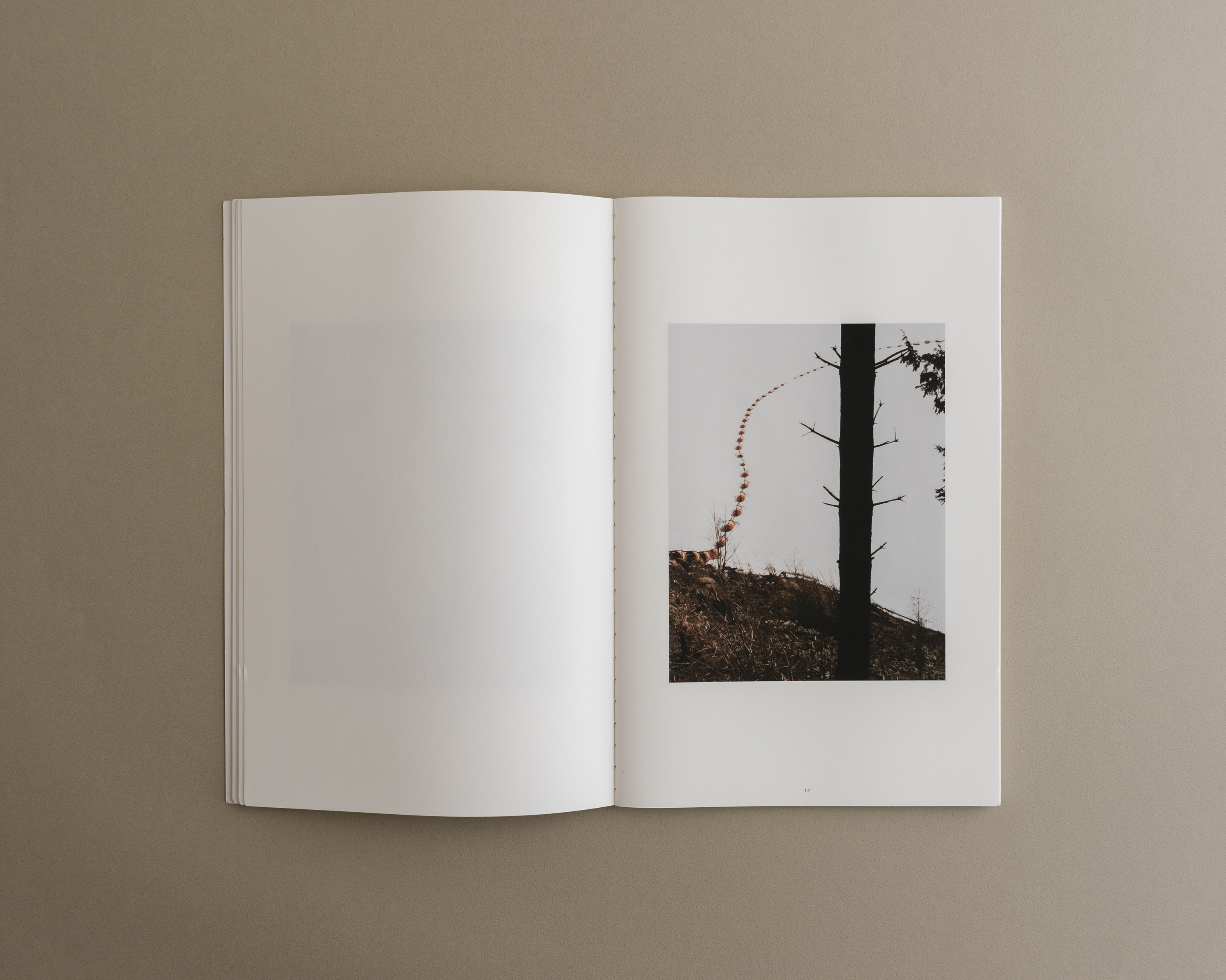 Symbiosis book 03 0004