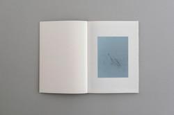 Symbiosis book 04  0001
