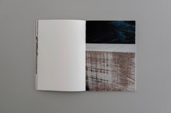 Symbiosis book 04  0009