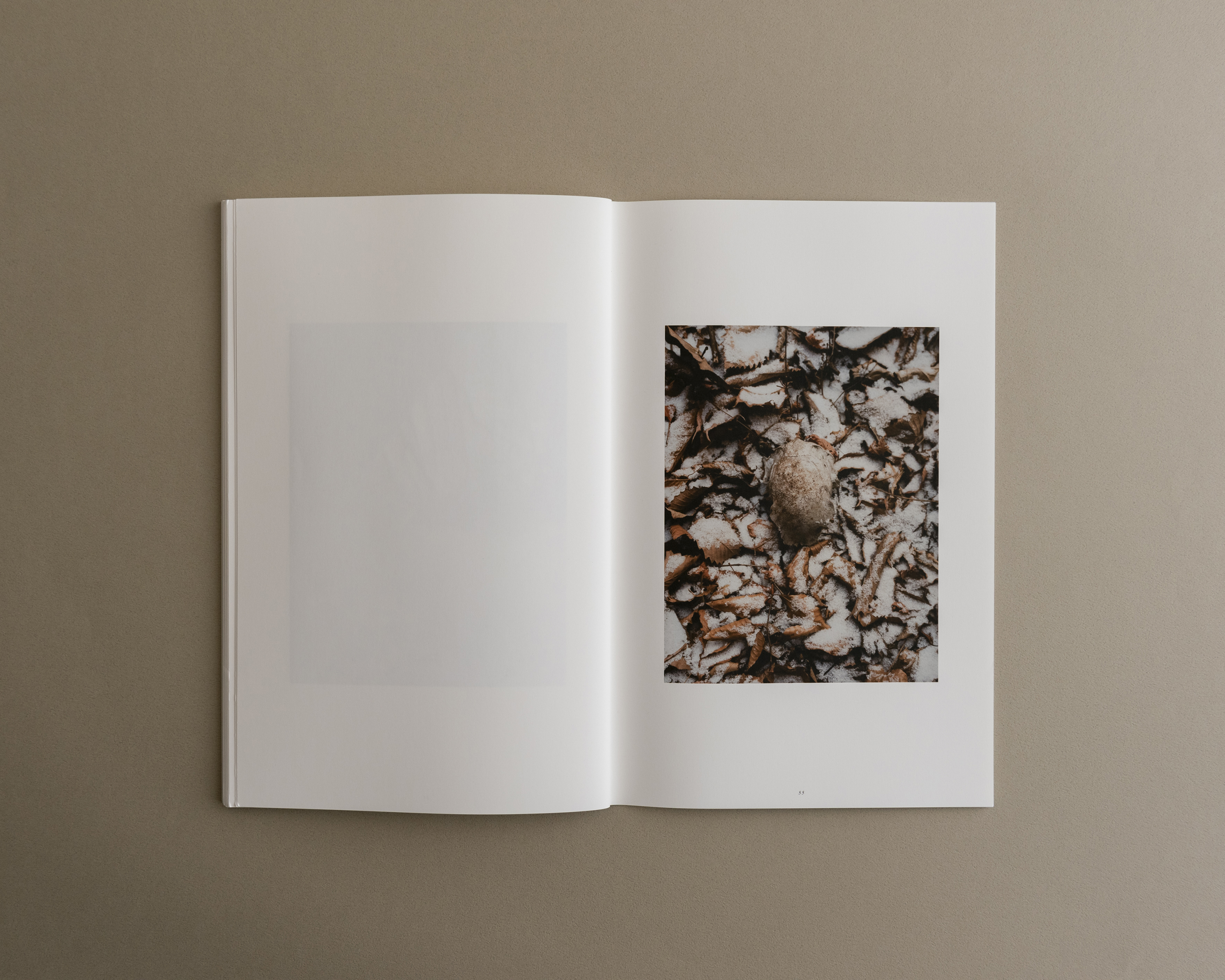 Symbiosis book 03 0010