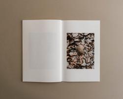 Symbiosis book 03 0010