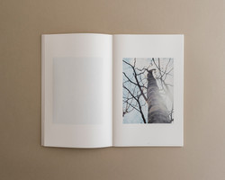 Symbiosis book 01 0006