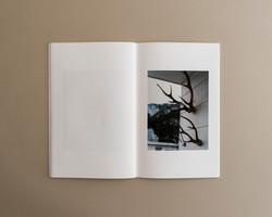 Symbiosis book 02 0006