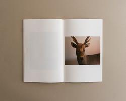 Symbiosis book 01 0009