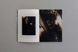 Symbiosis book 04  0005