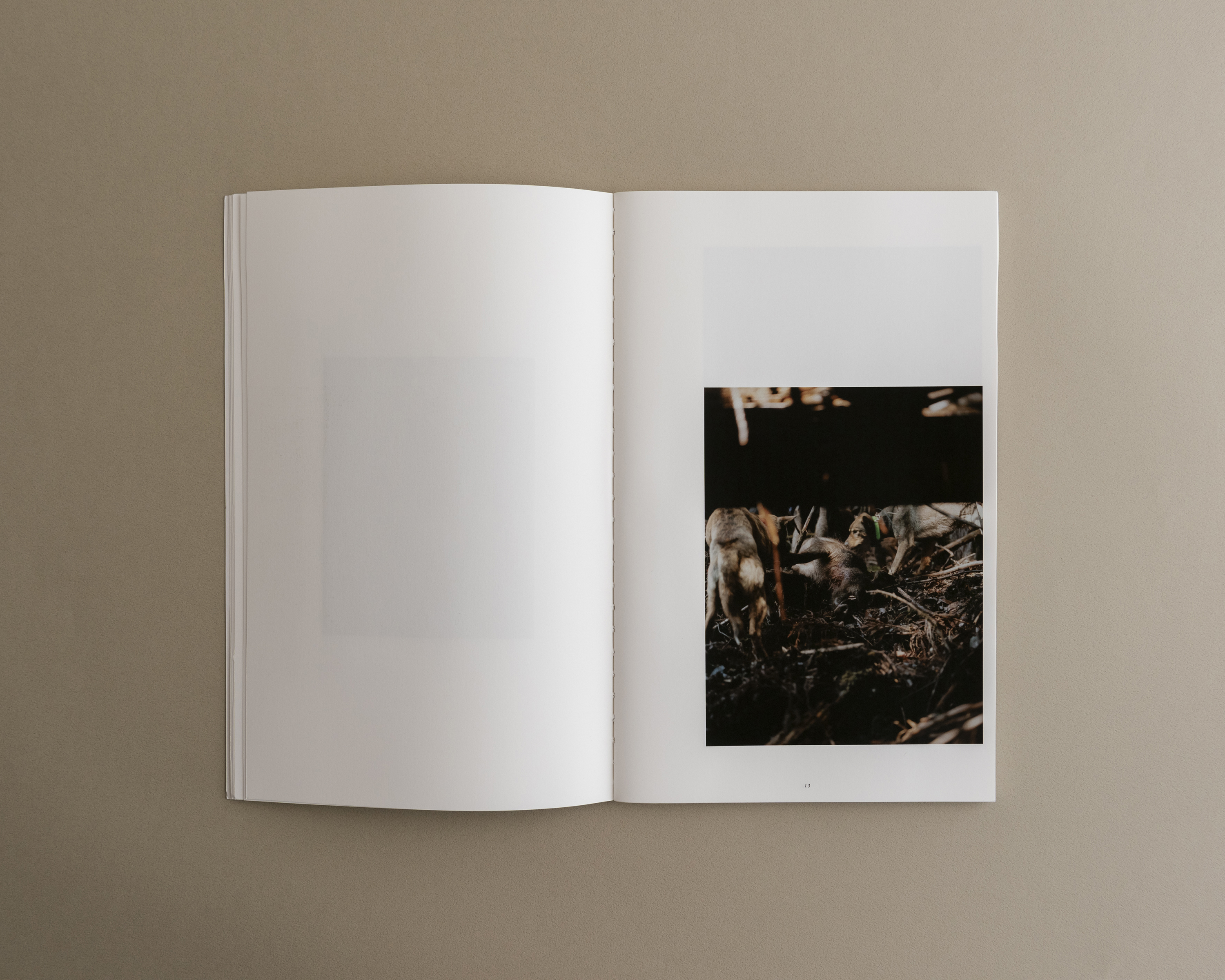 Symbiosis book 02 0003