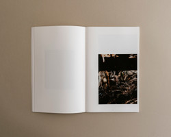 Symbiosis book 02 0003
