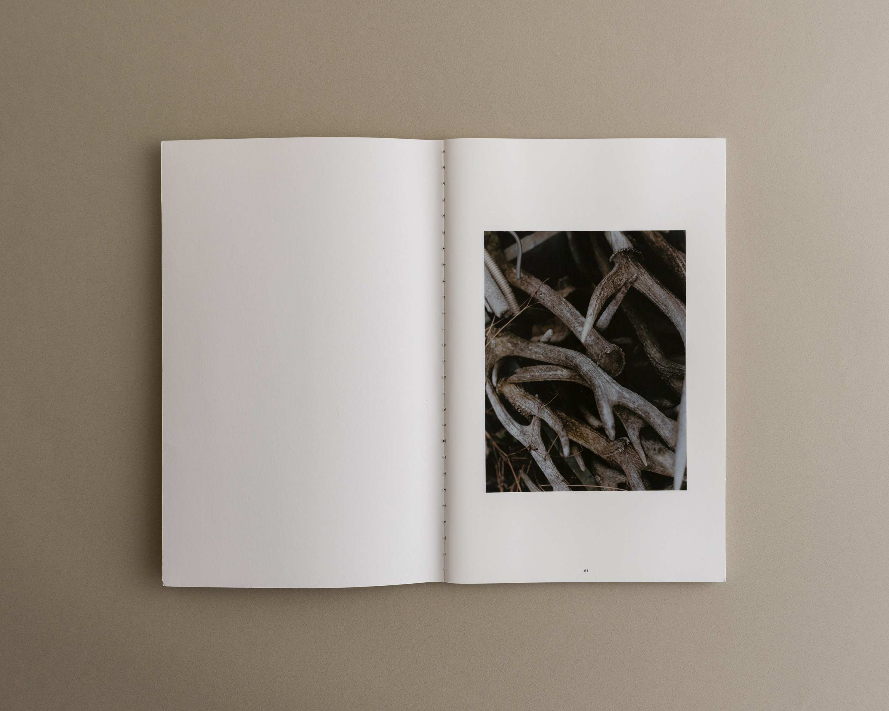 Symbiosis book 02 0002