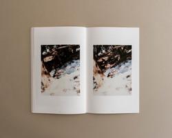 Symbiosis book 02 0008