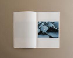 Symbiosis book 03 0005