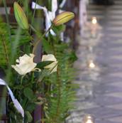 Fleurs, pétales et bougies