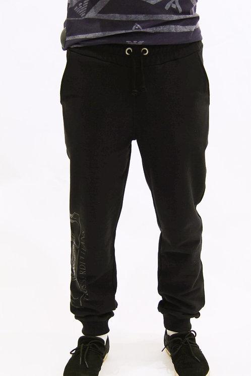 Спортивные штаны Trussardi Jeans