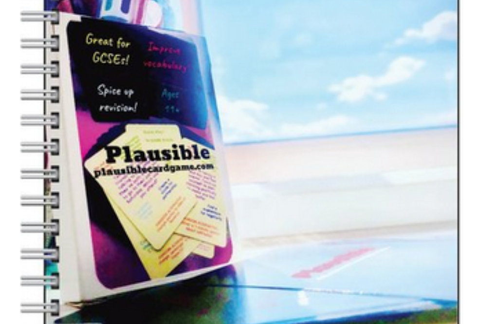 A5 Plausible Notepad