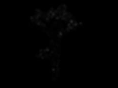 pngmialma logo.png