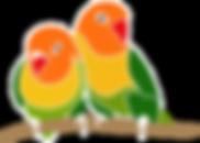 Prographo Logo