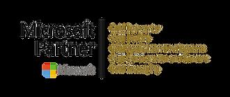 Microsoft Gold Partner 2.png