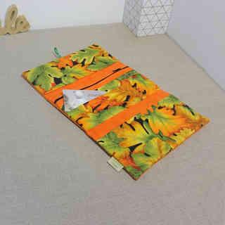 compagnon orange vif feuille automne ouv
