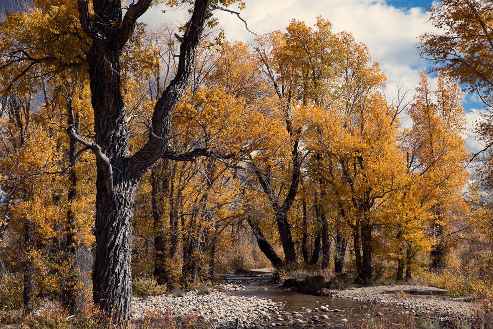 Tetons in Fall