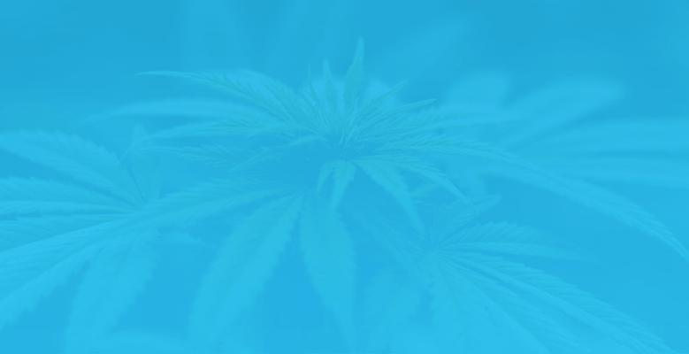 marijuana mobile.png