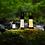 Thumbnail: LEDLENSER ML6 (Warm Light)