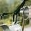Thumbnail: Filter017 Aluminum Alloy Carabiner