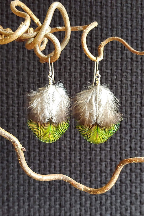 Chickie Chickie Earrings