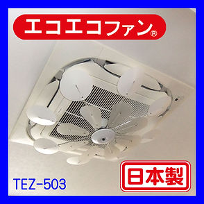 TEZ-503.jpg