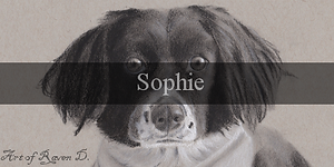 Sophie_BUtton.png