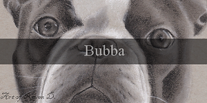 Bubba_BUtton.png