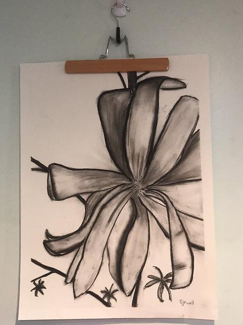 Star Magnolia-charcoal